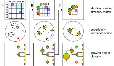 The agglomerative hierarchical clustering process